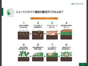 NT有機農法