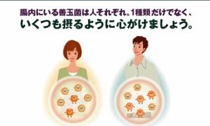 善玉菌は人それぞれ