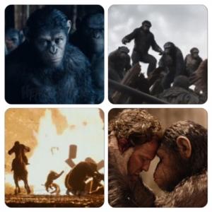 apes-rising