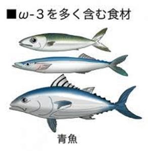 omega3と魚