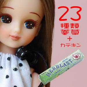 23種類薬草