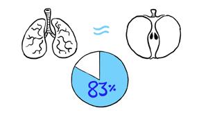 %e6%b0%b4%e3%82%92%e9%a3%b2%e3%81%be%e3%81%aa%e3%81%84%e3%81%a8%e3%81%a9%e3%81%86%e3%81%aa%e3%82%8b%e3%81%ae%e3%81%8b7