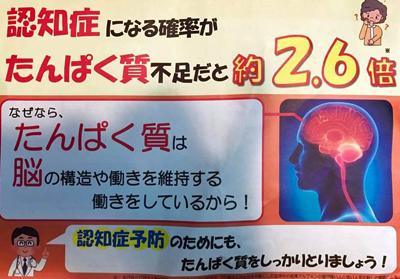 カーブスちらしタンパク質認知症