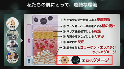 14ナイツ理論01