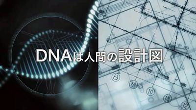 14ナイツ理論02